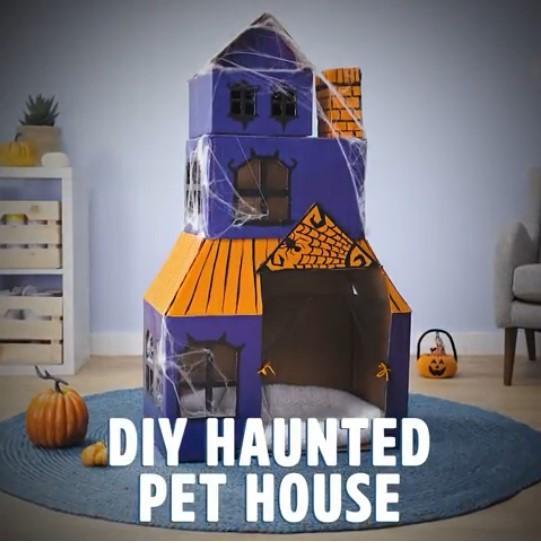 Cardboard dog house
